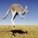 Австралийка